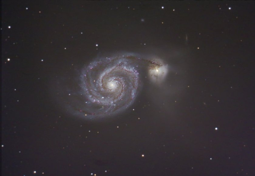 M51 Tony Licata