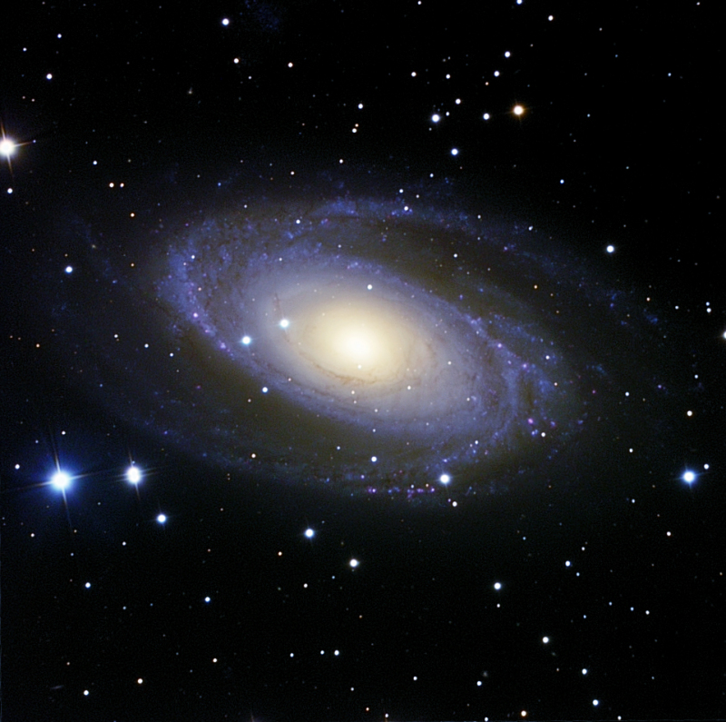 M 81 final_photo_DSP