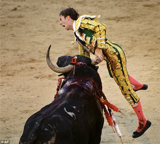 bull-fight-accident4